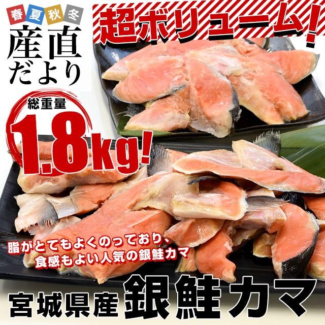 宮城県産 銀鮭のカマ 超ボリューム1.8キロ (360g×5袋)送料無料 ぎんさけ さけかま