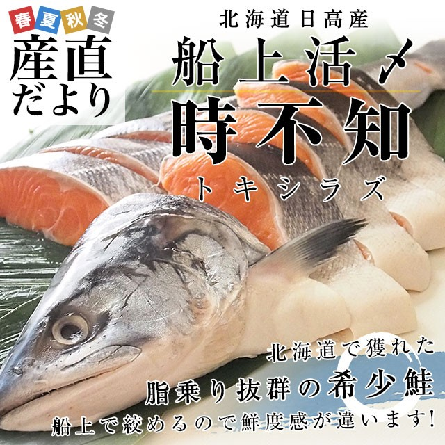 北海道から直送 北海道日高産 船上活〆 時不知(トキシラズ) 半身 姿切身 約1キロ 北海道サケ シャケ 時鮭