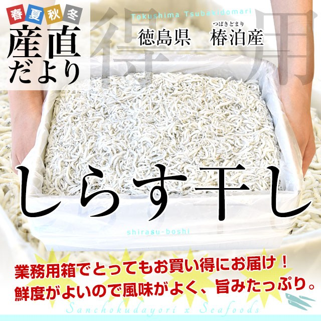 徳島県椿泊産 しらす干し 1キロ入り 業務用箱 シラス干し シラス 産直だより 豊洲市場直送 送料無料