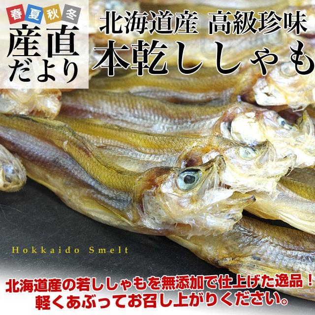 北海道産 高級珍味 本乾 本ししゃも 4袋セット (25g×4P) 産直だより 北海道直送 柳葉魚 本シシャモ 若ししゃも 送料無料