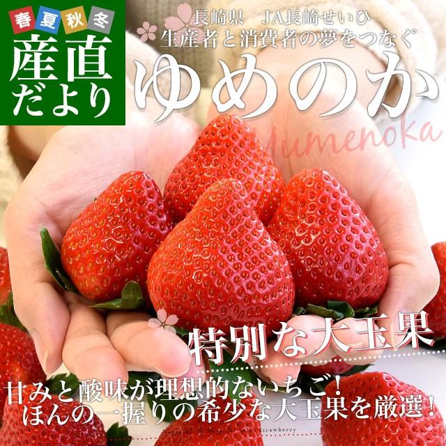 長崎県より産地直送 JA長崎せいひ 期待の新品種いちご ゆめのか 500g化粧箱(8粒から15粒入) 送料無料 苺 イチゴ こいみのり 長崎西彼