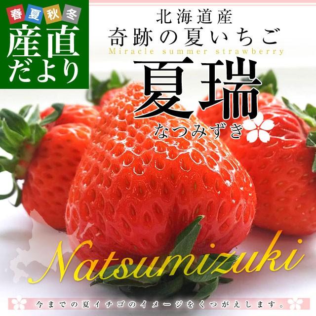 北海道より産地直送 高級いちご 夏瑞(なつみずき)約200g(6粒から7粒)×2パック 化粧箱入り イチゴ 苺 夏イチゴ 産直だより