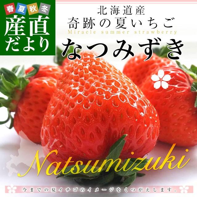 北海道より産地直送 高級いちご なつみずき 約300g(20粒または24粒)化粧箱入り イチゴ 苺 夏イチゴ 産直だより