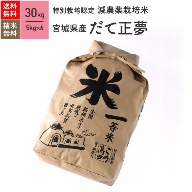 特別栽培米 宮城県産 だて正夢 30kg 令和2年産