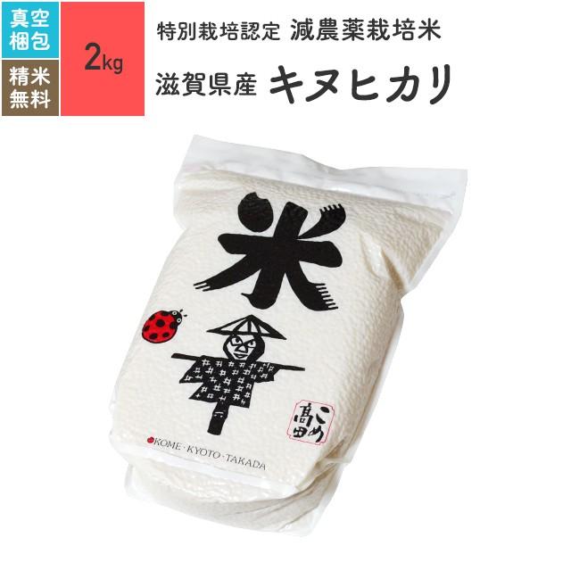 特別栽培米 滋賀県産 キヌヒカリ 2kg 令和元年産
