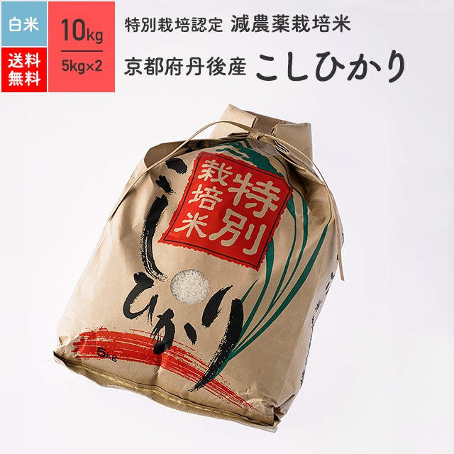 特別栽培米 京都 丹後産 コシヒカリ 10kg 精米 令和2年産