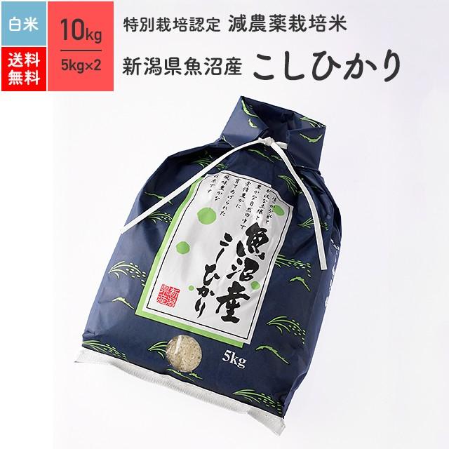 特別栽培米 新潟県魚沼産 こしひかり 10kg 白米 令和2年産 送料無料