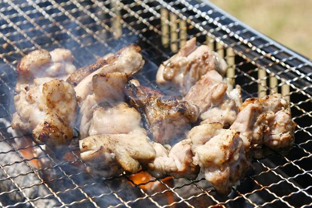 【徳島県|地鶏】阿波尾鶏の贅沢BBQセット【産地直送|同梱不可】